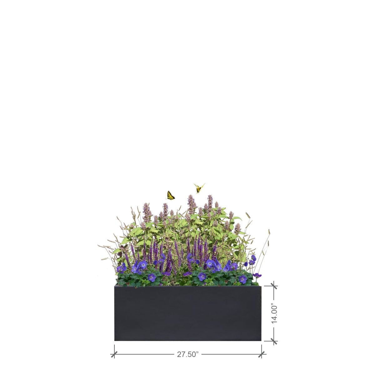 Small Lead Rectangle Planter, BLOOMTIME
