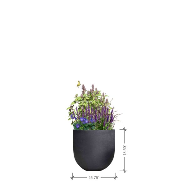 Small Round Charcoal Planter with Purple Lover Plant Palette, BLOOMTIME