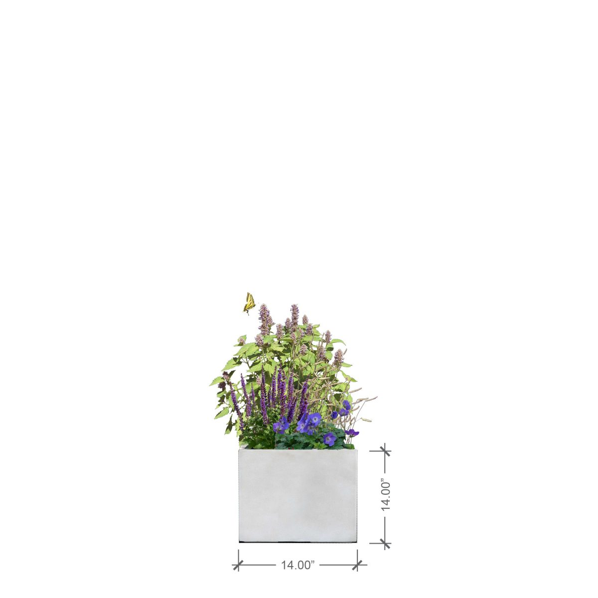Small Ivory Square Planter, BLOOMTIME