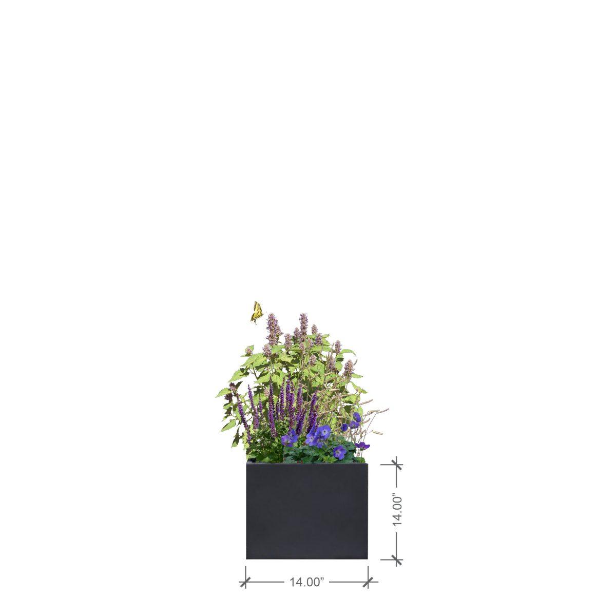 Small Lead Square Planter, BLOOMTIME
