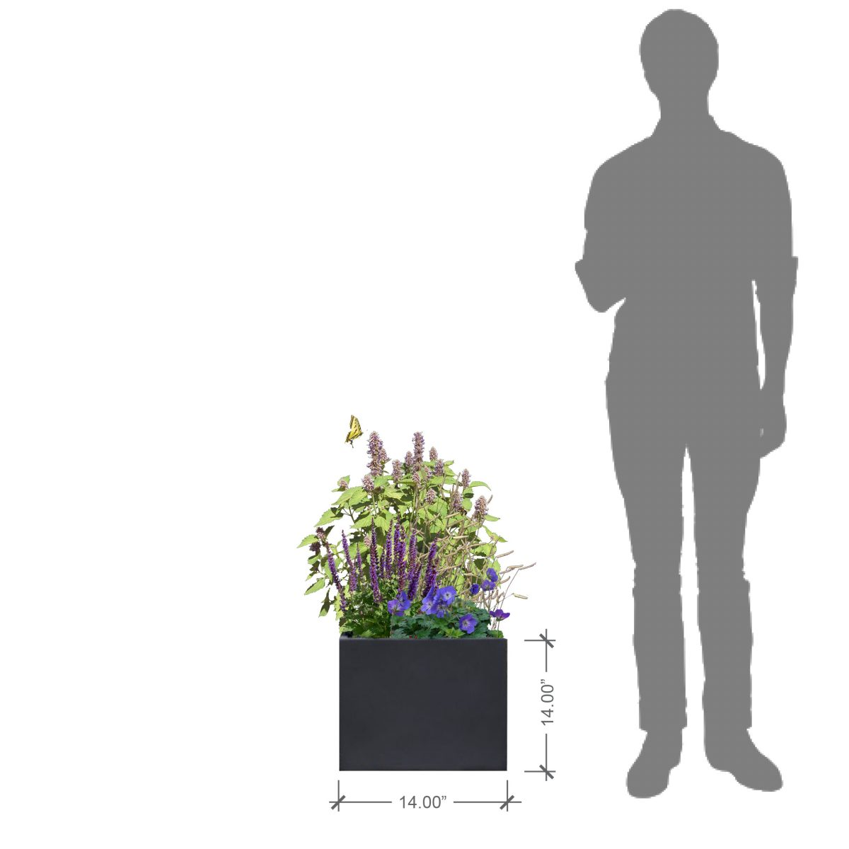 BLOOMTIME Charcoal Square Planter with Purple Lover Plant Palette (to scale model)