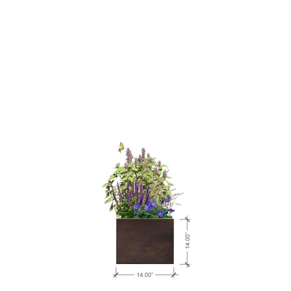 BLOOMTIME Rust Square Planter with Purple Lover Plant Palette