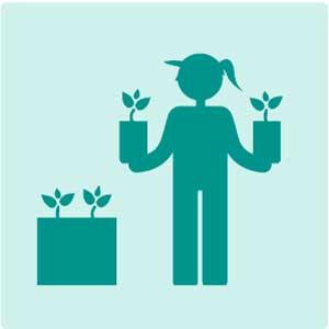 Choosing Plants Icon - BLOOMTIME