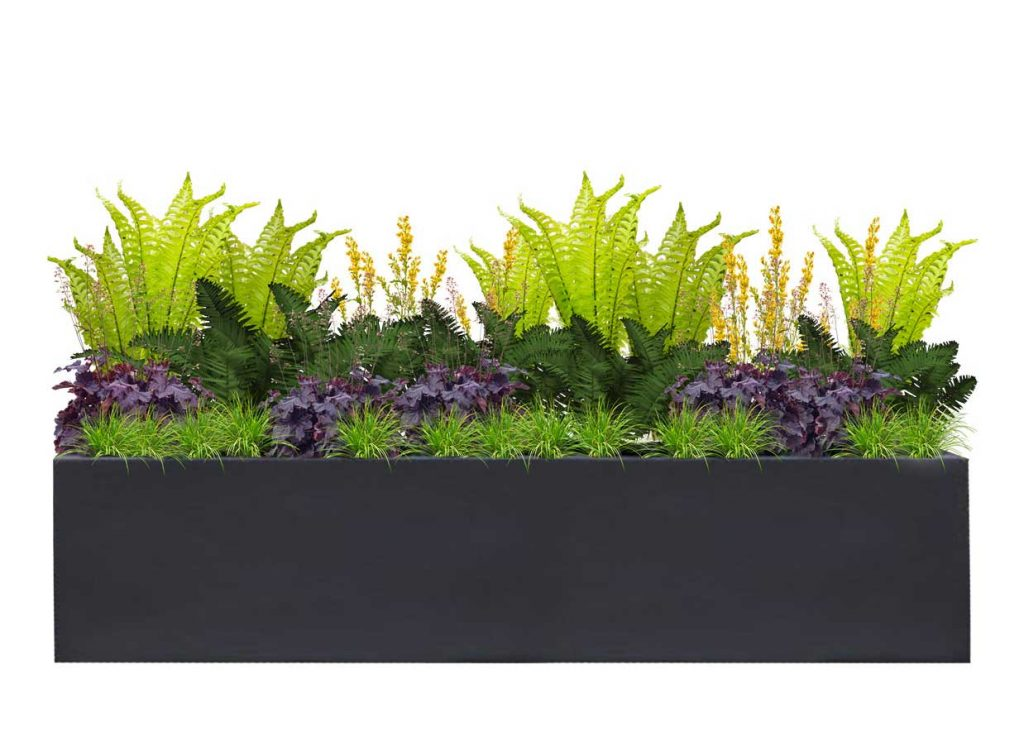 Large Rectangle Charcoal Planter with Fern Glade Plant palette - BLOOMTIME