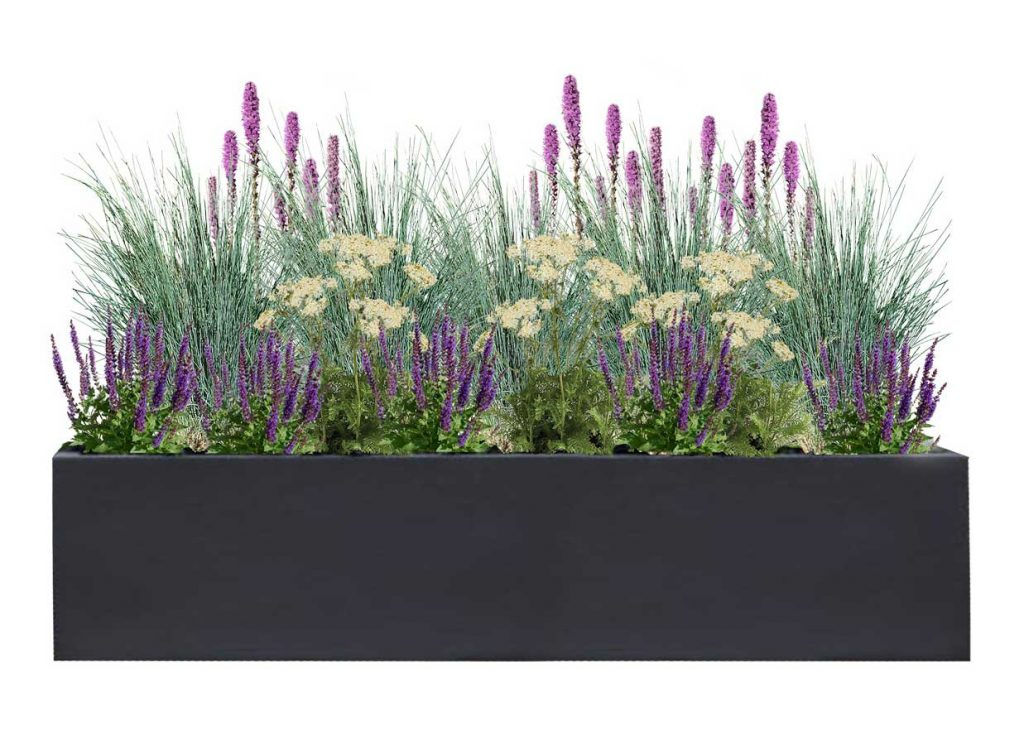 Large Rectangle Charcoal Planter with Meadow Plant palette - BLOOMTIME