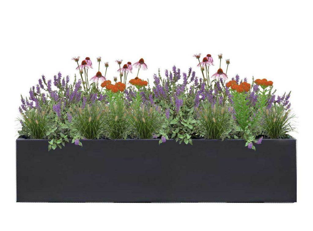 Large Rectangle Charcoal Planter with Pollinator Special Plant palette - BLOOMTIME