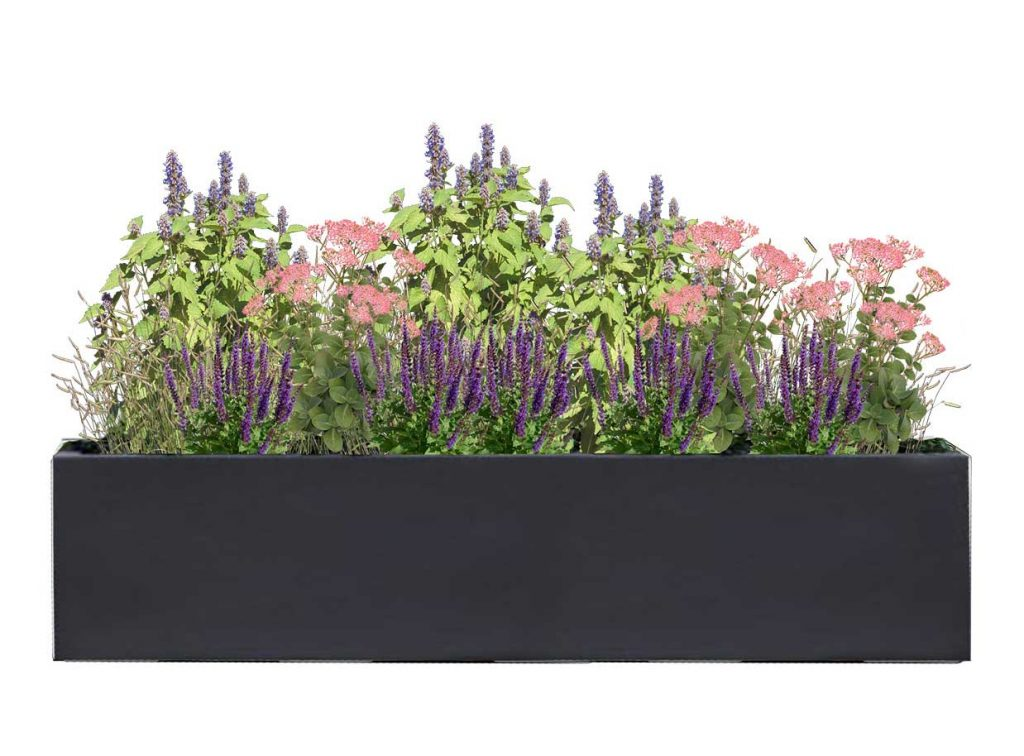 Large Rectangle Charcoal Planter with Stress Lovers Plant palette - BLOOMTIME