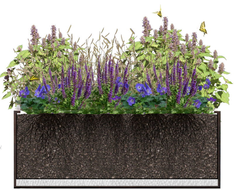 Section of Bloomtime Rust Planter Kit with Purple Lover Plant Palette