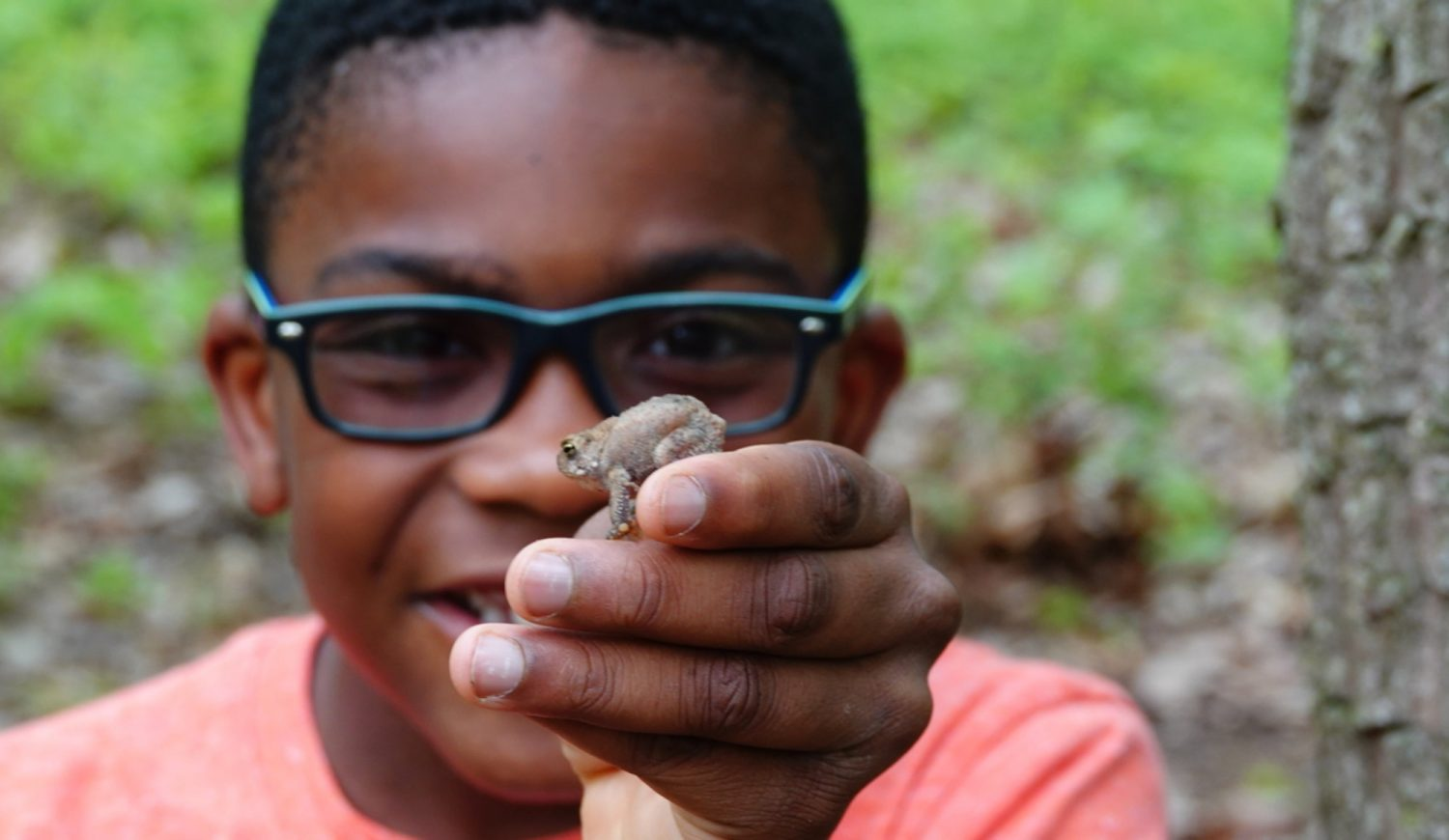 Holding Toad_NaturalLands